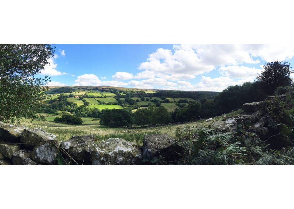 Beautiful English countryside #yorkshire #northyorkmoors