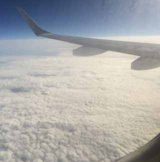 In Flight - Caffeineberry